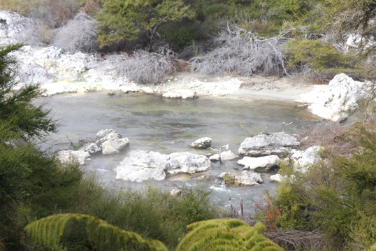 ロトルア温泉