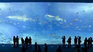 沖縄の女子旅・おすすめ人気スポットランキング