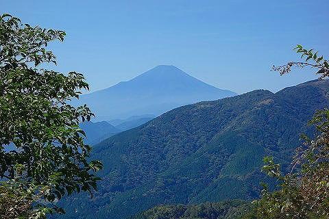 大山から見た富士山