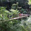 高尾山に女子一人で登る!【その1基礎知識編】