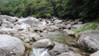 屋久島・縄文杉に女子一人で登る方法【その7予算編】