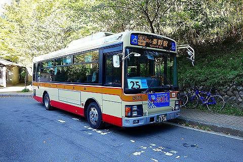 ヤビツ峠バス